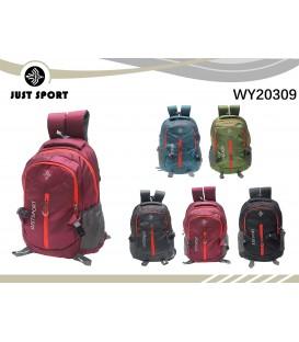 WY20309
