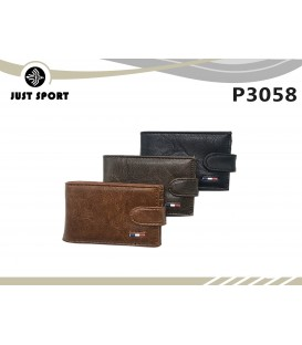 P3058